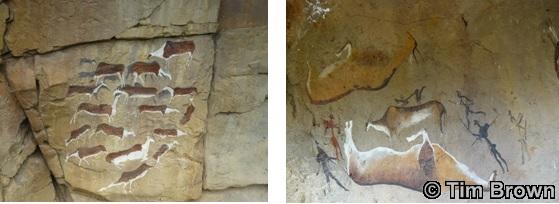 Bushman Paintings at Giants Castle Day Safari Tours
