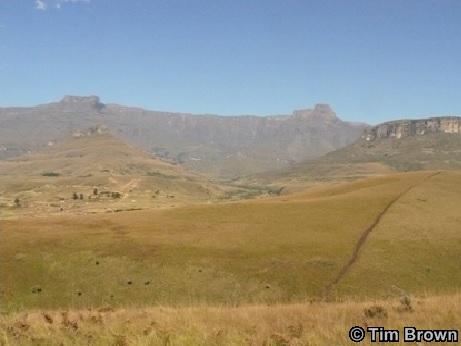 Drakensberg royal Natal national park Day Safari Tour