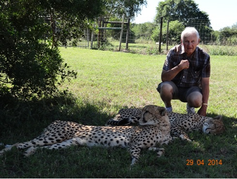 Bazil with the Cheetahs at Emdoneni cat rehab centre on our 4 Day Big 5 Durban Safari Tour to Hluhluwe Umfolozi game reserve