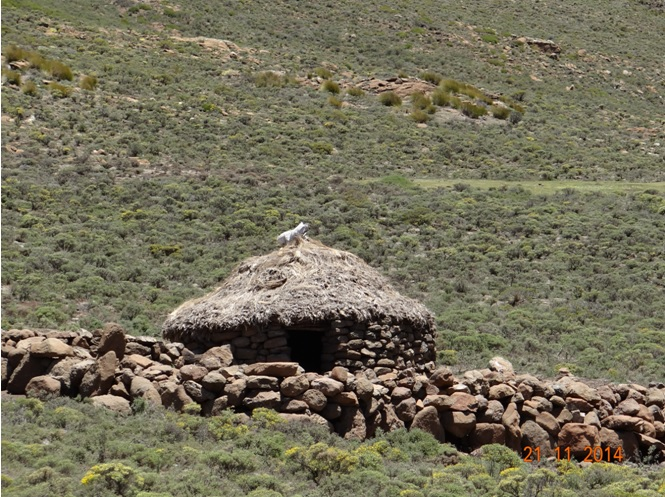 Basotho hut seen in Lesotho on our Durban Day Tour to the Drakensberg up Sani Pass