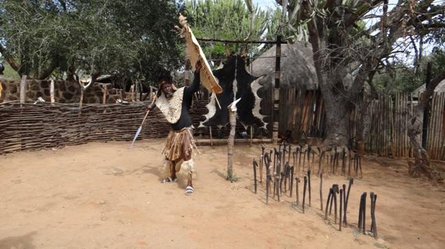 Shakaland tour; Zulu Warfare demonstration