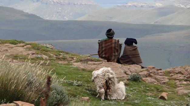 Drakensberg tour; Basotho Shepards on top of Sani Pass
